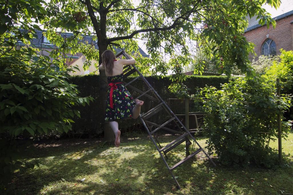 kersenboom op trap aangepast 1